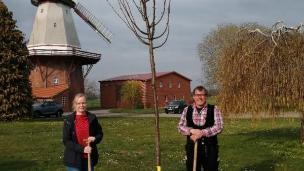 Demokratiebaum-Pflanzung in Blender